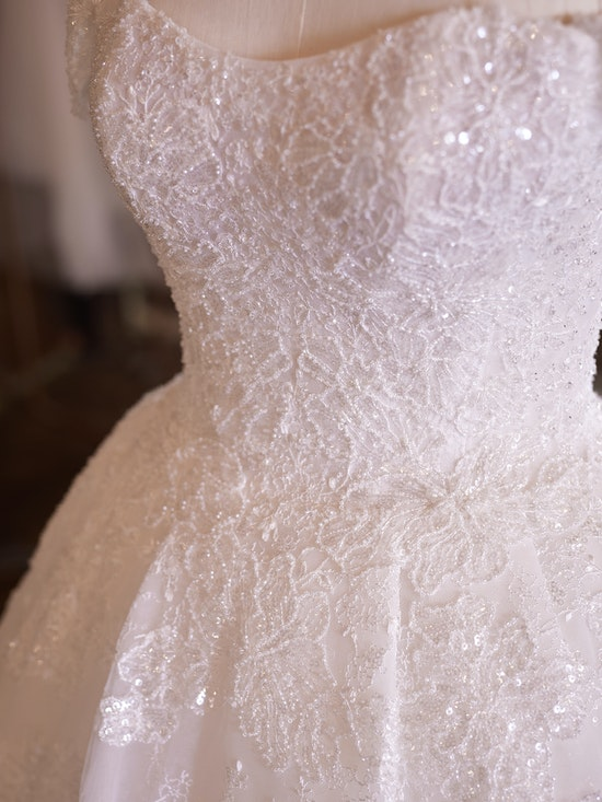 Sottero and Midgley Wedding Dress Zartasha 21SV864A01 Alt104