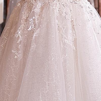 Sottero and Midgley Wedding Dress Verina 21SV859 bp01