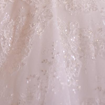 Sottero and Midgley Wedding Dress Zartasha 21SV864 bp01