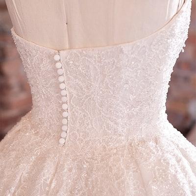 Sottero and Midgley Wedding Dress Zartasha 21SV864 bp07