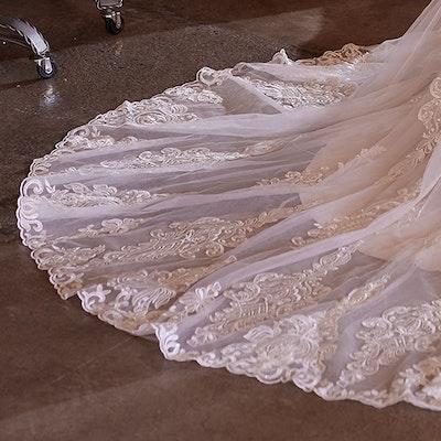 Maggie Sottero Wedding Dress January 21MS754 bp08